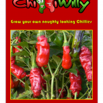 chilli packet